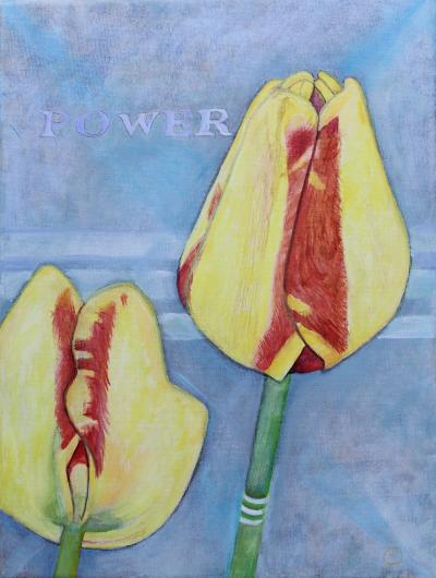tulips-power